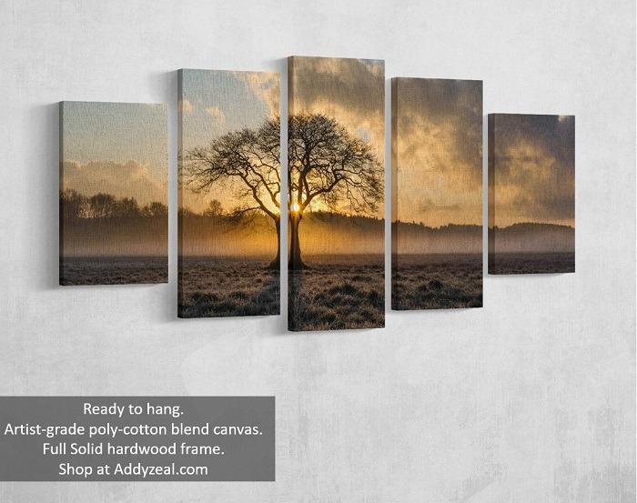 Vintage tree canvas wall art quality