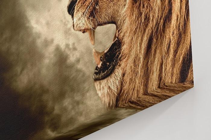 lion wall art, lion art, lion canvas art, canvas wall art, lion canvas, lion prints, lion home decor, living room wall decor, lion canvas wall art, lion painting on canvas, large wall art, animal canvas art, animal wall art, wildlife wall art.