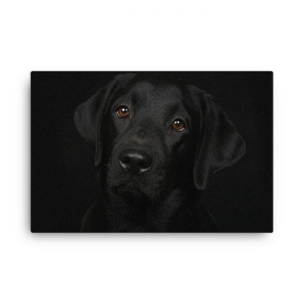 Black Labrador Dog Wall Art HD Portrait