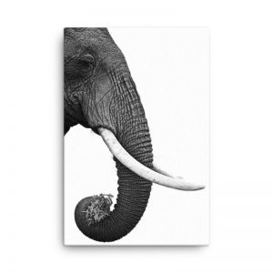 Elephant Scandinavian Style Wall Art HD Portrait
