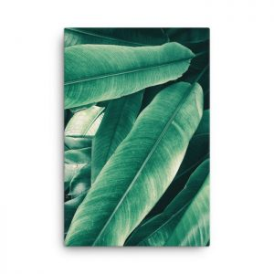 European Chestnut Leaves Wall Art HD