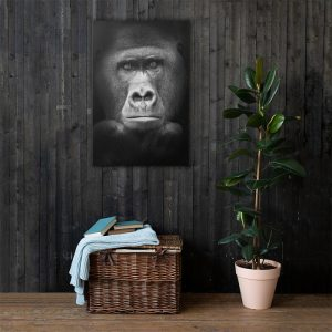 Gorilla Wall Art HD Portrait
