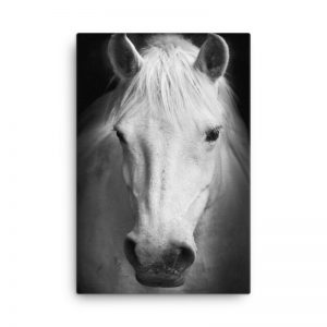 Legendary Horse Wall Art HD Portrait
