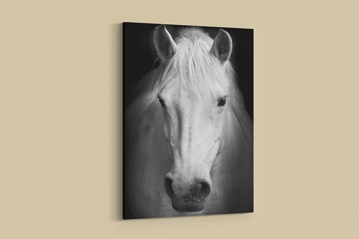 Legendary Horse Wall Art HD Portrait horse canvas wall art