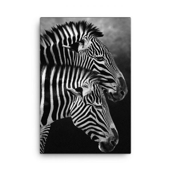 Zebra Couple Wall Art HD