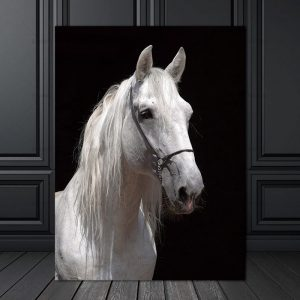 White Horse Wall Art HD Portrait