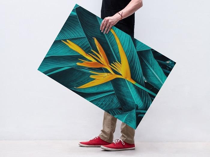 modern Art, scandinavian wall art, Joy wall art, modern canvas wall art, modern paintings, modern art paintings, abstract painting, feather wall decor, colorful wall art, flower wall art, flower canvas art.
